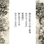 野菊・詩画