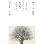 ハルニレ・朝の挨拶_edited-3web